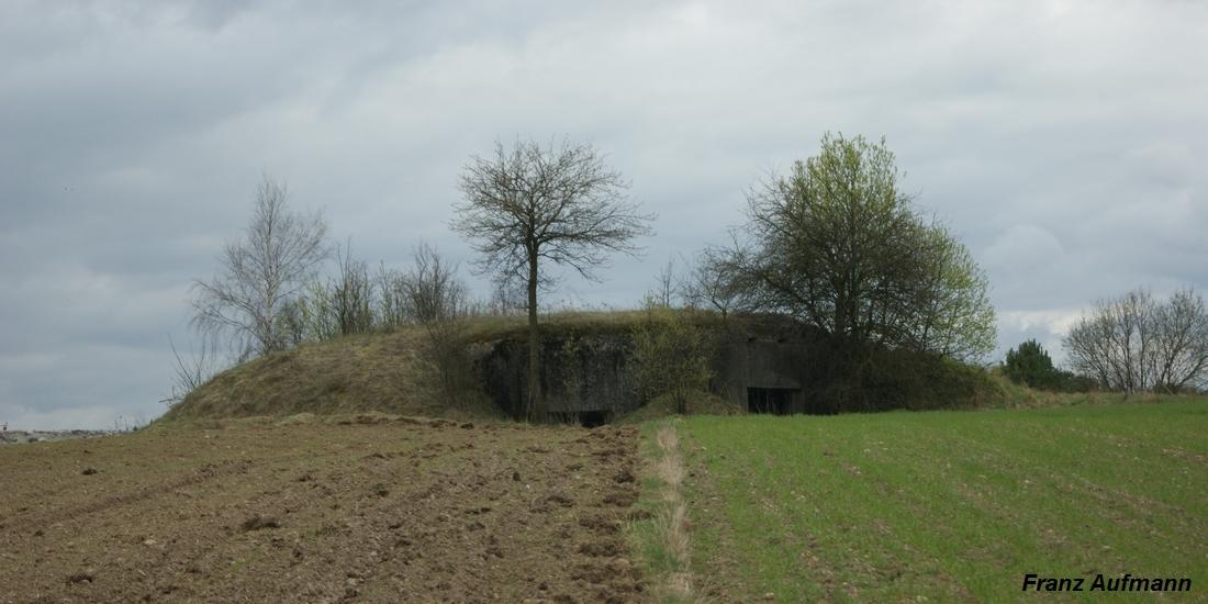 Fot. 07. Jednokondygnacyjny schron na 45 mm armatę przeciwpancerną,ckm (OPDOT) i rkm z nasypem ziemnym, maskowany jako pagóre. ( Zaruzie - Zambrowski RU)