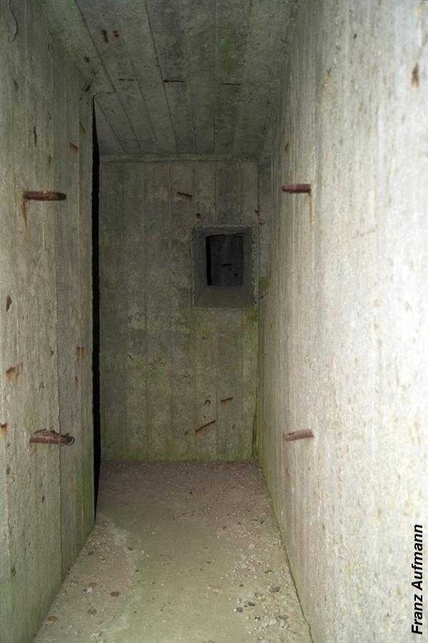 OPDOT wejście (1)