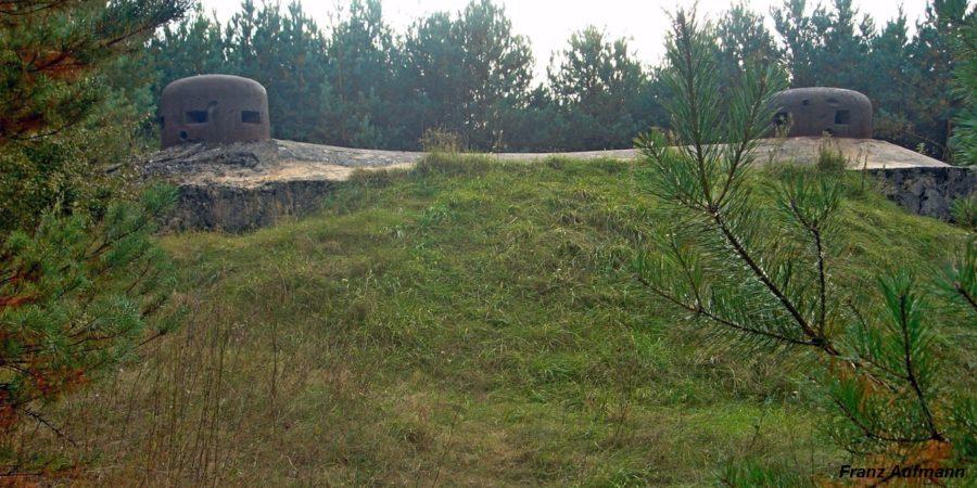 Nowogród 03 08