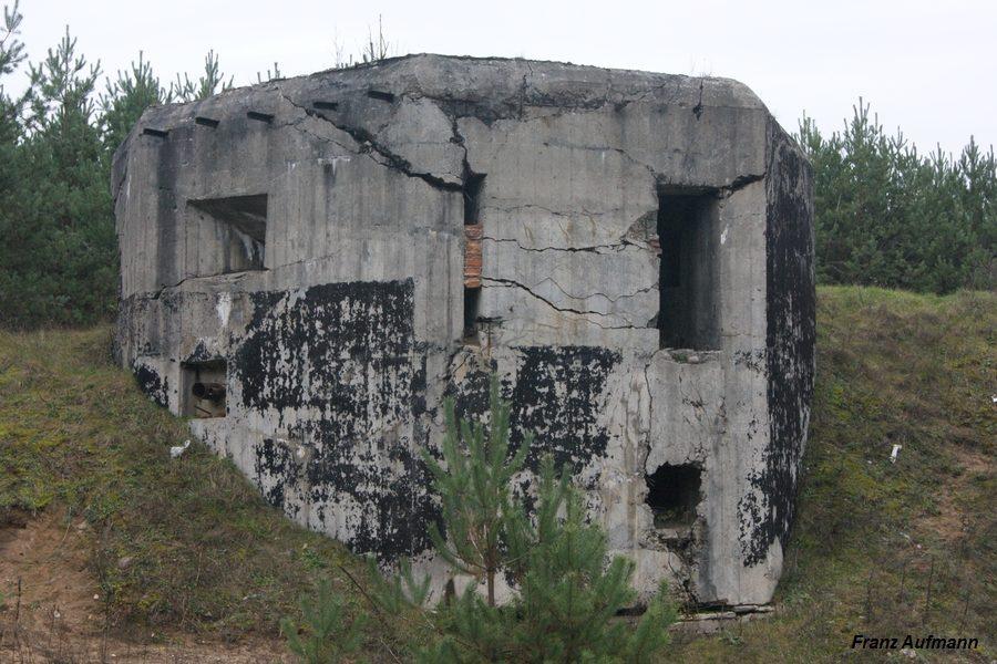 Fot. Linia Mołotowa. PDOT - dwukondygnacyjny schron na trzy ciężkie karabiny maszynowe i rkm w widoku od strony zapola (Wąsosz Osowiecki Rejon Umocniony).
